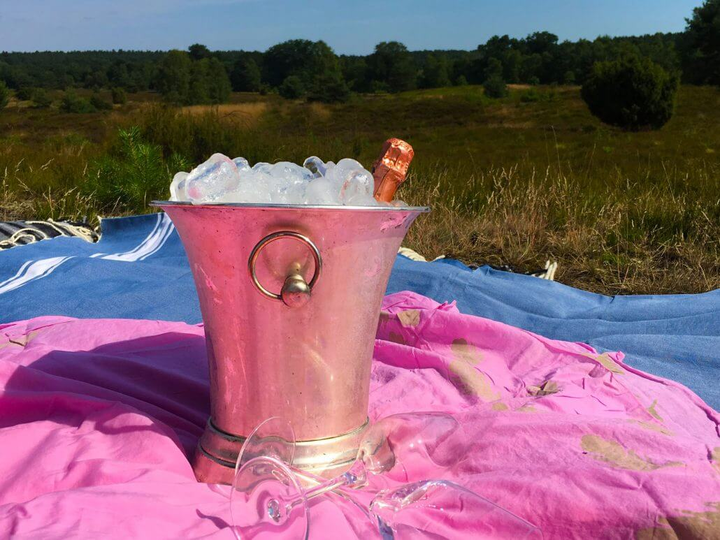 Champagne in cooler with glasses in Nature Reserve